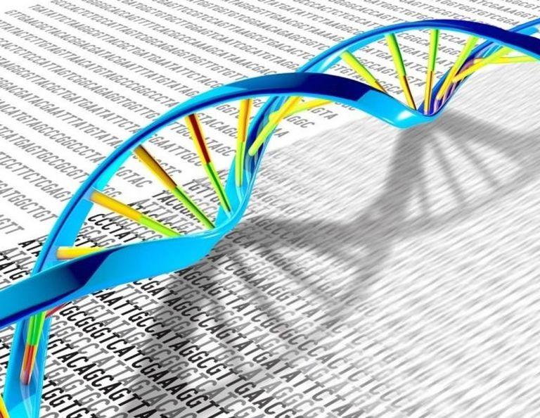 Cuándo podremos guardar nuestros archivos en el ADN