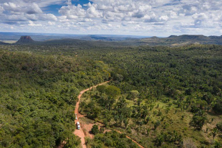 Uno de los caminos que lleva al santuario de elefantes en Brasil