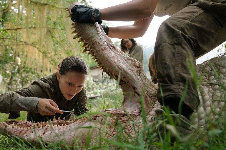 Natalie Portman y Tessa Thompson como dos de las integrantes de la expedición que ingresa en la misteriosa Área X