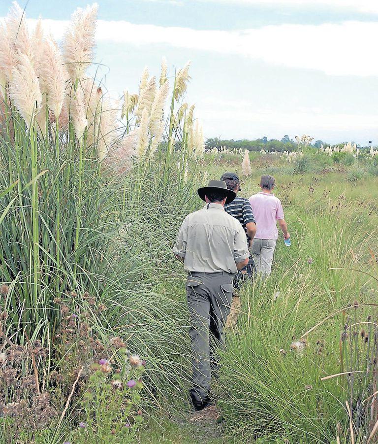 Caminatas por los senderos de la Reserva Otamendi