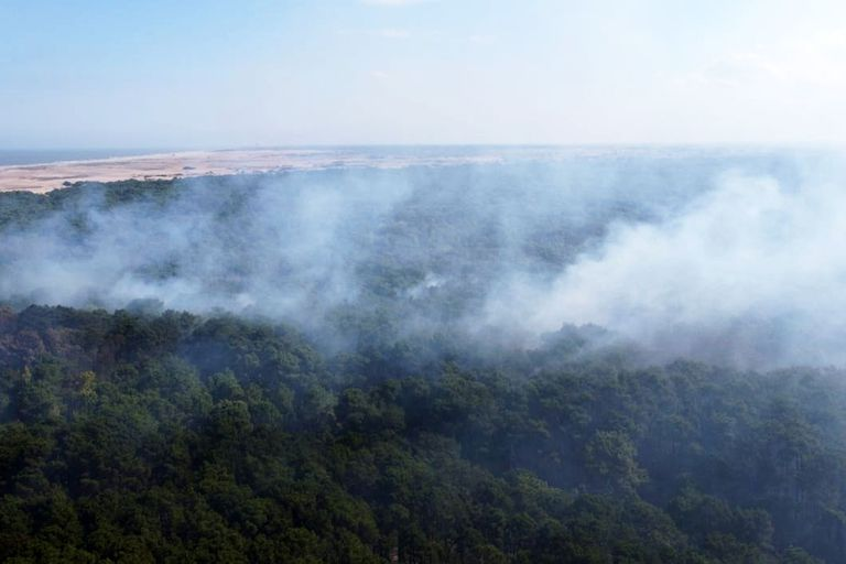 Vista aérea, con el mar de fondo, del incendio en el bosque de Cariló
