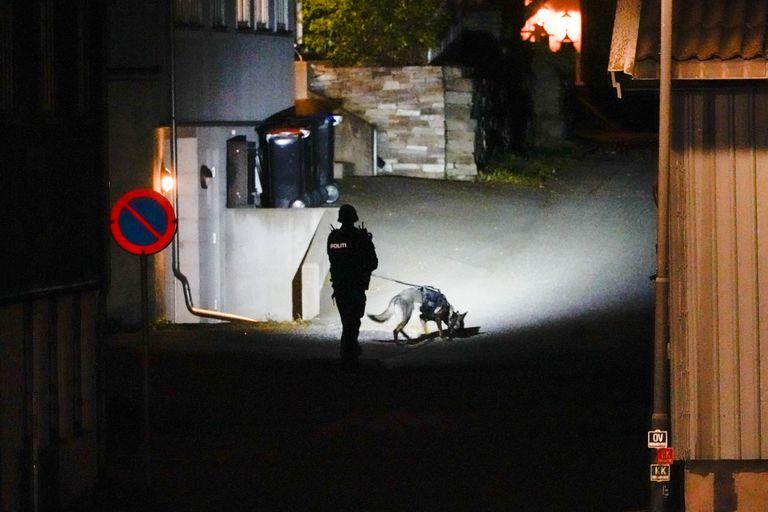 Un policía noruego en la escena del ataque, en Kongsberg. Photo: Håkon Mosvold Larsen//dpa