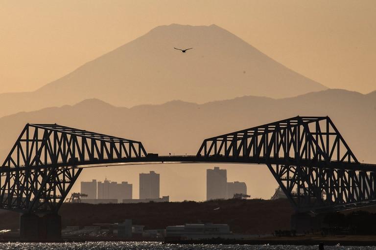 A contramano del mundo: por qué caen las muertes en Japón a pesar de la pandemia