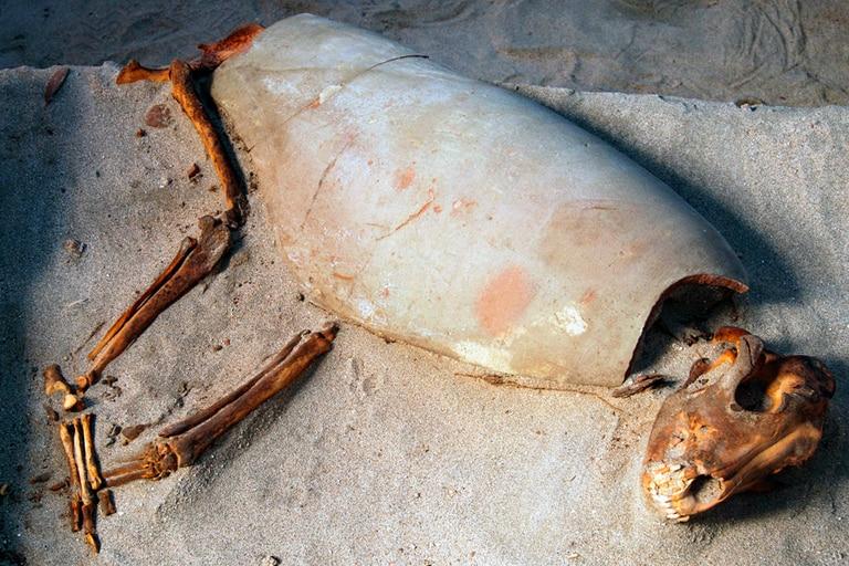 Lo que inicialmente parecía el hallazgo de unos 100 animales, recientemente se descubrió que corresponde a un área donde están enterrados casi 600 gatos, perros y monos de hace 2000 años