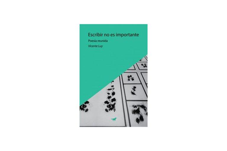 Reseña: Escribir no es importante, de Vicente Luy