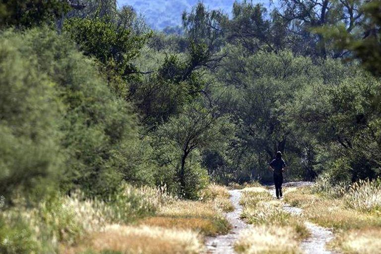 Córdoba. El Parque Nacional Traslasierra suma 17.000 hectáreas