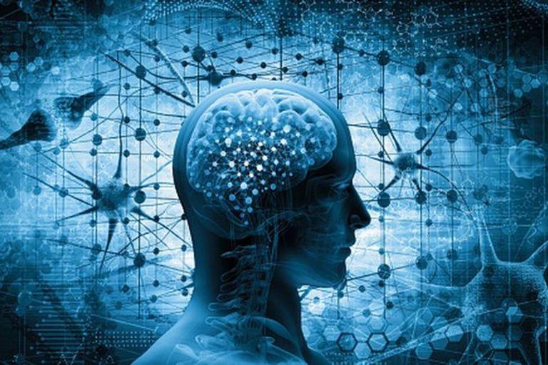 """Coronavirus: seis formas de """"reiniciar tu cerebro"""" después de un año en pandemia"""