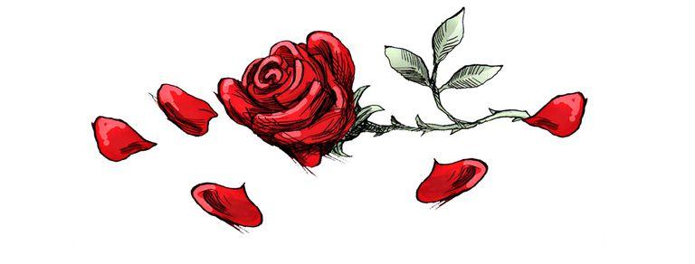 Lo que dicen las cartas de amor a la distancia