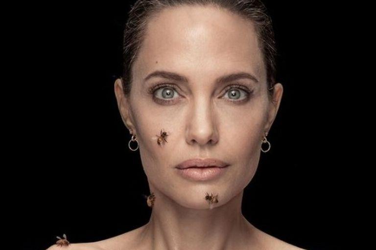 Qué esconde la impactante foto de Angelina Jolie cubierta de abejas