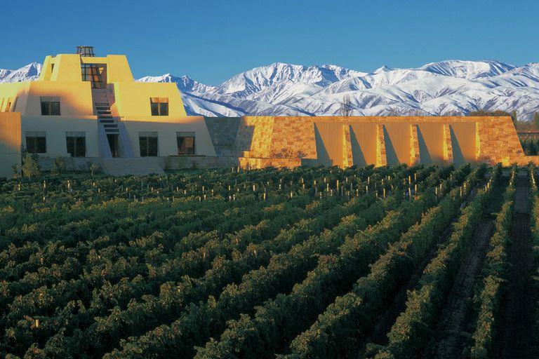 Un lugar en el mundo. La bodega Catena Zapata entre los viñedos y los nevados picos montañosos; los toneles donde guardan sus creaciones
