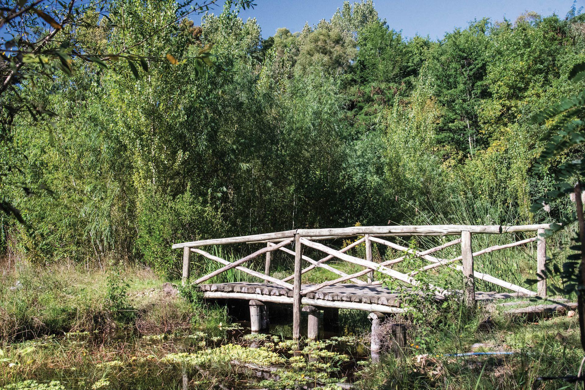 La Reserva Natural Municipal Los Robles, de Moreno, fue fundada en 1989 mediante una ordenanza para promover la educación ambiental, el turismo y la recreación.