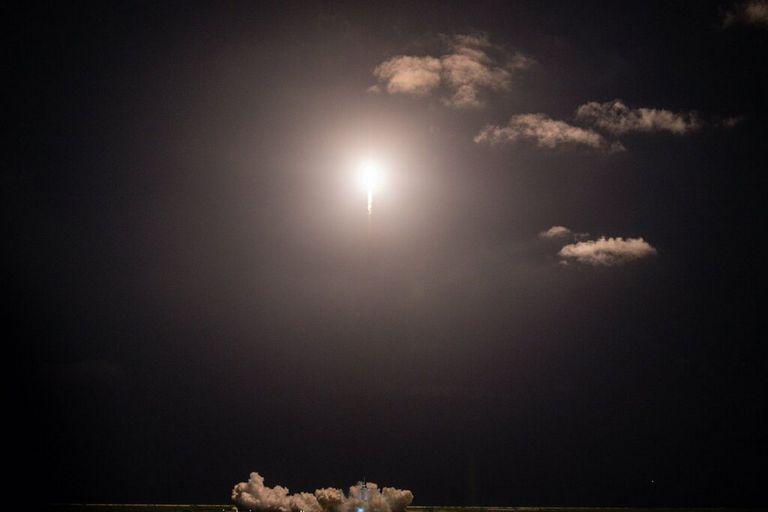 Hongos espaciales y millonarios detrás del renacimiento del programa espacial