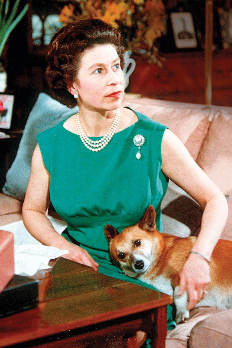 """1960s: En 1969, Su Majestad fue filmada con sus perros para un """"detrás de escena"""" de un documental que retrataba la vida de la realeza."""