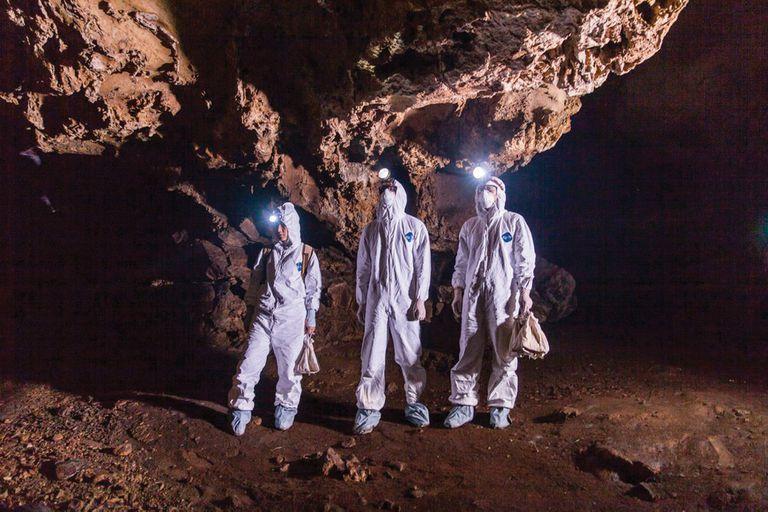 Un equipo de EcoHealth Alliance, organización que colabora con expertos como Shi, en una cueva de murciélagos en Guangdong