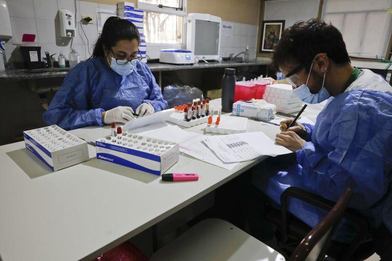 Los ensayos del laboratorio Medicago también se realizan en el hospital Militar de la Ciudad de Buenos Aires