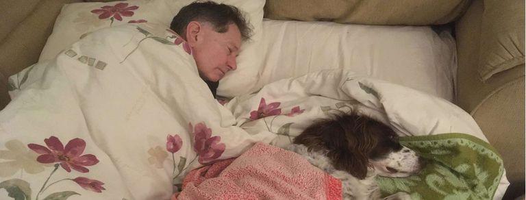 Conmovedor. Duerme en el sofá de PB de la casa para acompañar a su perro mayor