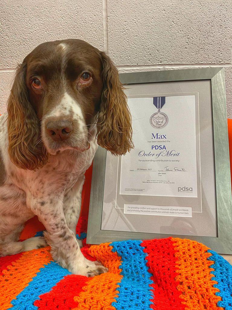 Una de las fotos de Max junto al reconocimiento que recibió por su aporte a la salud mental de la gente   Foto: Facebook Max Out in the Lake District