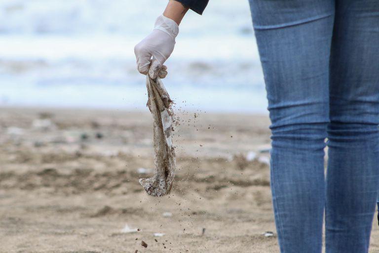 Se estima que entre el 40 y el 60% de las tortugas ingieren plásticos y que en algunas especies de aves este porcentaje se eleva incluso hasta el 93%.
