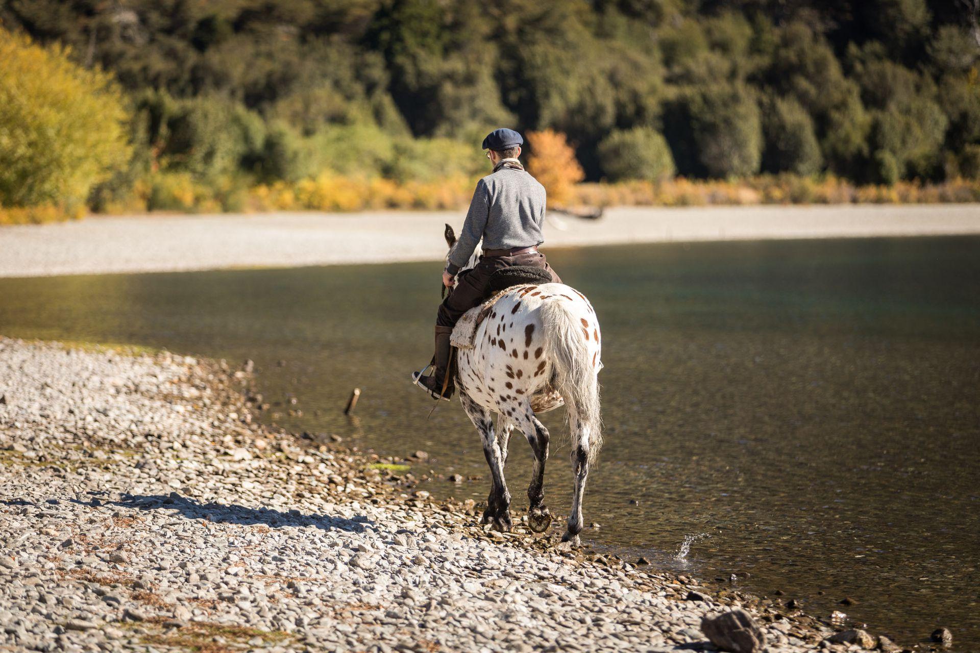 Los paseos a caballo son otra opción para internarse en el bosque a ritmo manso.