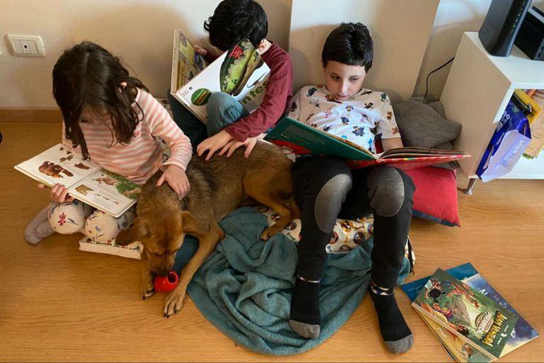 Libros, juegos y mascotas: todo lo que necesitan estos chicos para disfrutar en casa