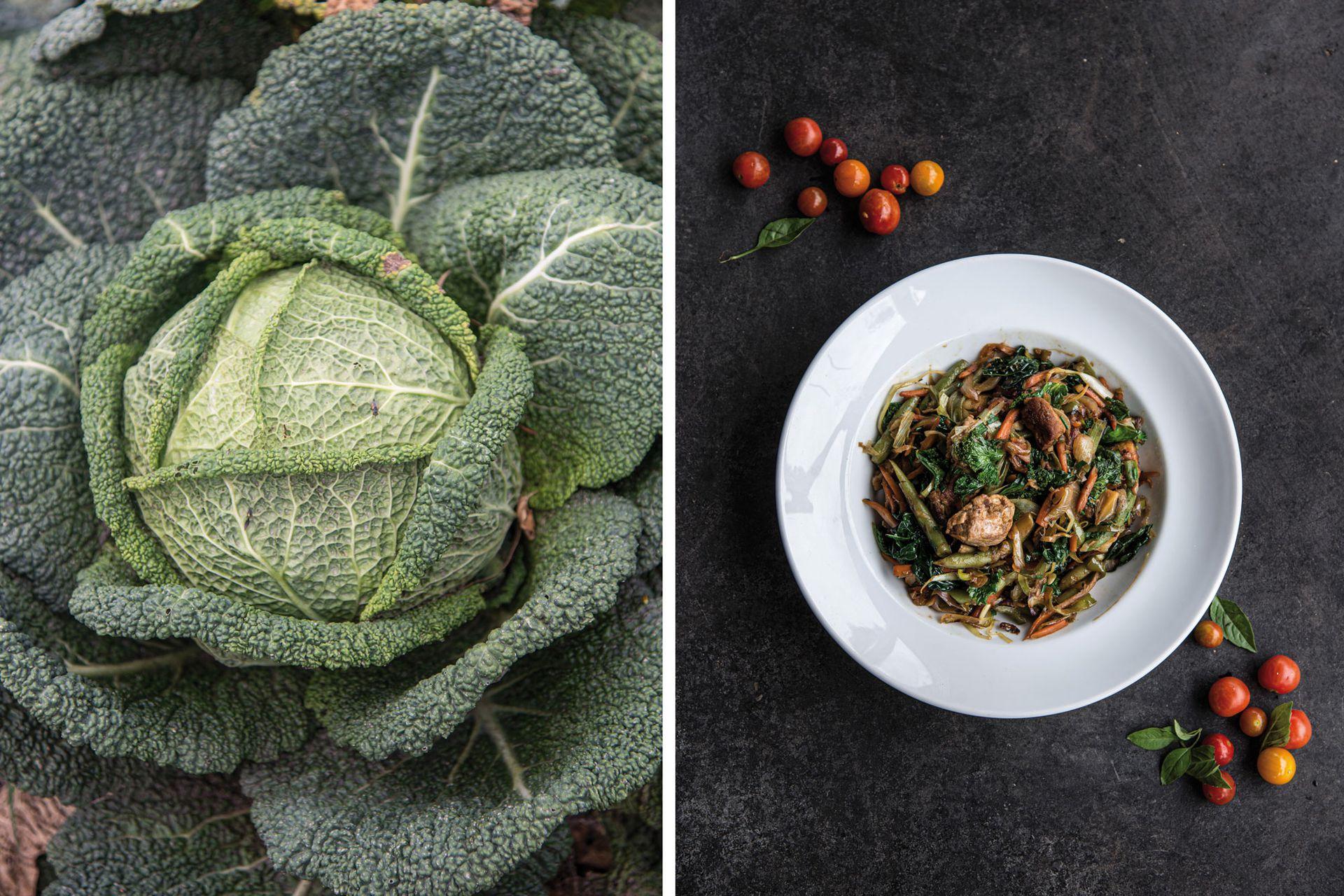 Repollo o col de Saboya o de Milán; y un plato de wok con varias de esas verduras recién cosechadas. Delicias de la huerta de Greens City Bell.