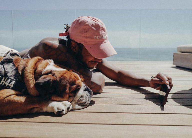 Algo de paz: Lewis Hamilton disfruta de un breve descanso con su mascota Roscoe