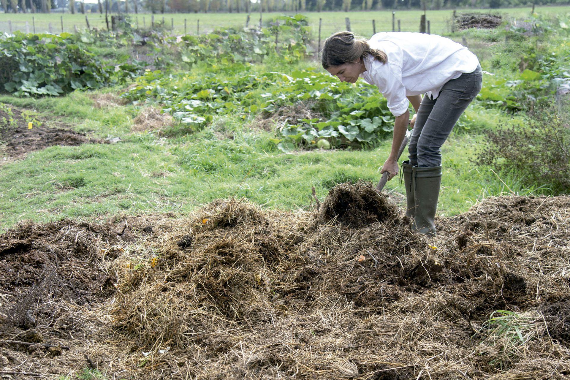 Al hacer compost, imitamos a la naturaleza, ya que con él activamos procesos orgánicos para fabricar fertilizantes naturales que alimentan el suelo.