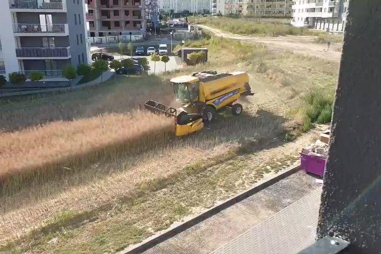 El propietario de un terreno en la ciudad polaca de Lublin se resistió a los avances inmobiliarios en la zona y continúa cosechando rodeado de pavimento