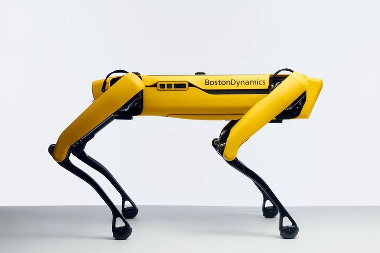 Después de varios años de desarrollo con diversos prototipos, el robot cuadrúpedo Spot de Boston Dynamics sale a la venta por 74.500 dólares
