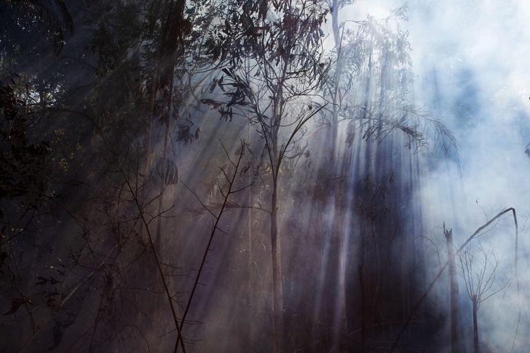 El humo se eleva desde un área en llamas de la reserva de la selva amazónica, al sur de Novo Progresso en el estado de Pará, Brasil, el 15 de agosto de 2020