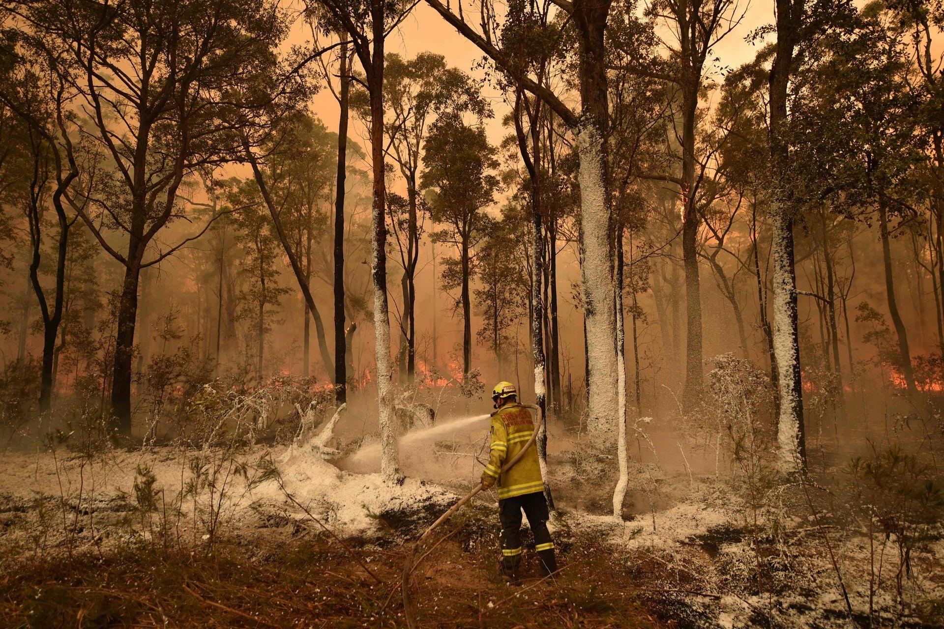 Un bombero rocía espuma ignífuga en un área delante de un frente de incendios en la ciudad de Jerrawangala, Nueva Gales del Sur, el 1 de enero.