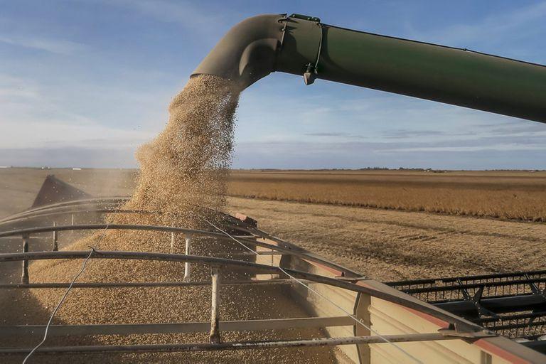 Por qué una fundación del campo critica el proyecto de ley agroindustrial