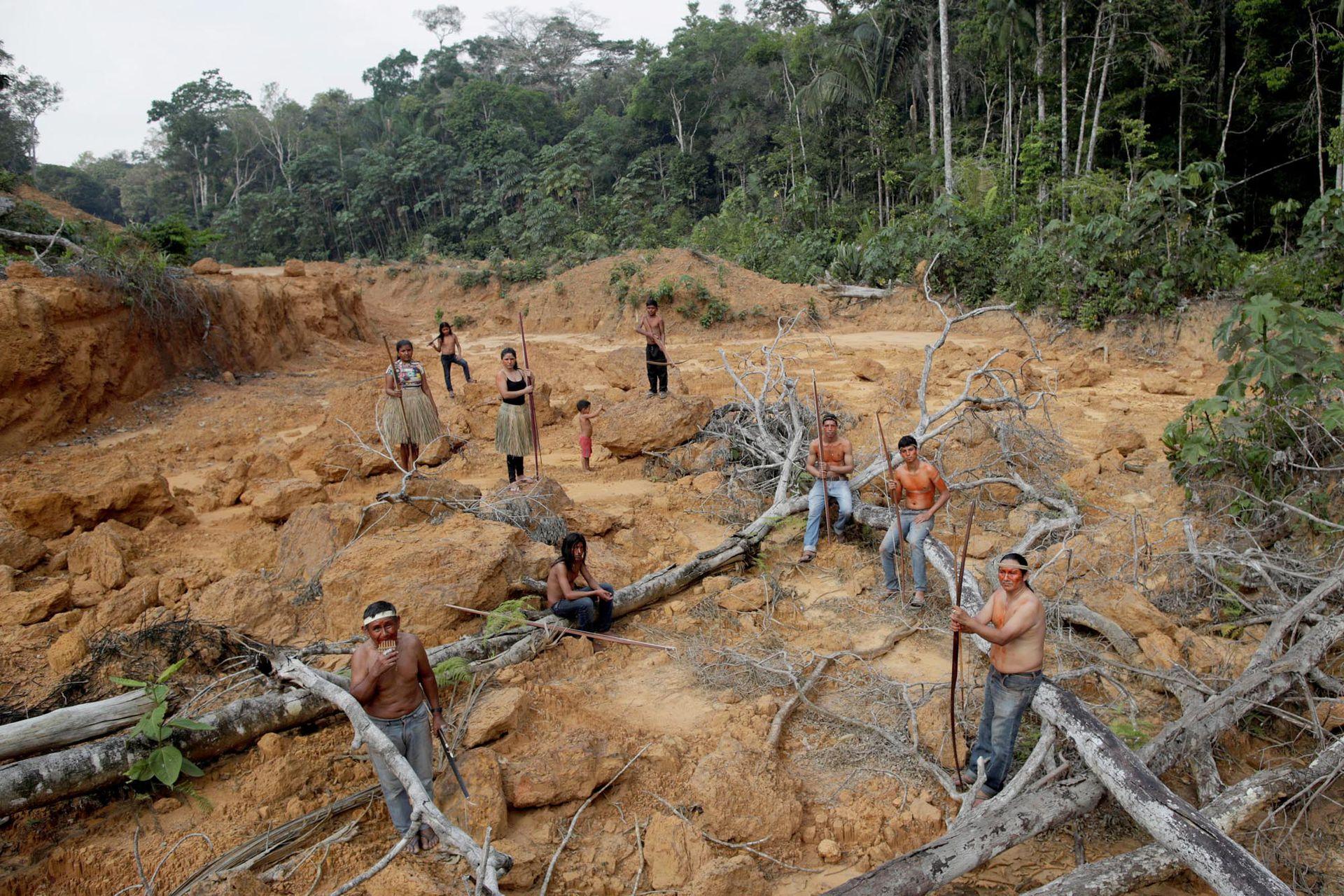 Los pueblos indígenas de la tribu Mura muestran un área deforestada en tierras indígenas sin marcar dentro de la selva amazónica cerca de Humaita