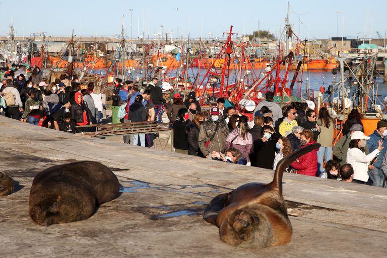 Mar del Plata fue una de las ciudades más visitadas en la Costa