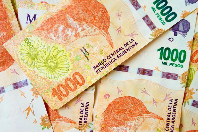 Un senador de Juntos por el Cambio propuso la creación de billetes de 5.000 y 10.000 pesos
