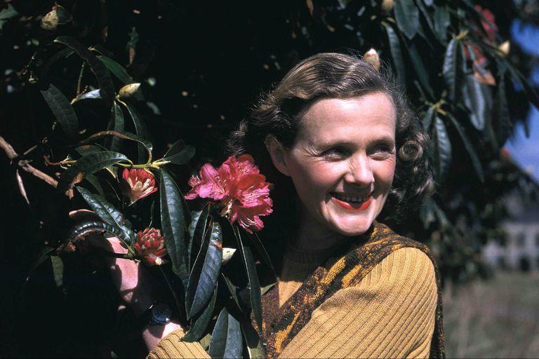 Daphne du Maurier, el nombre detrás de Rebeca y otras joyas del misterio