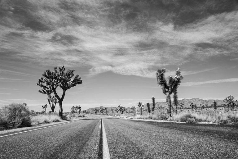 """""""California"""", una de las fotografías del proyecto solidario que reúne a más de cien artistas argentinos"""