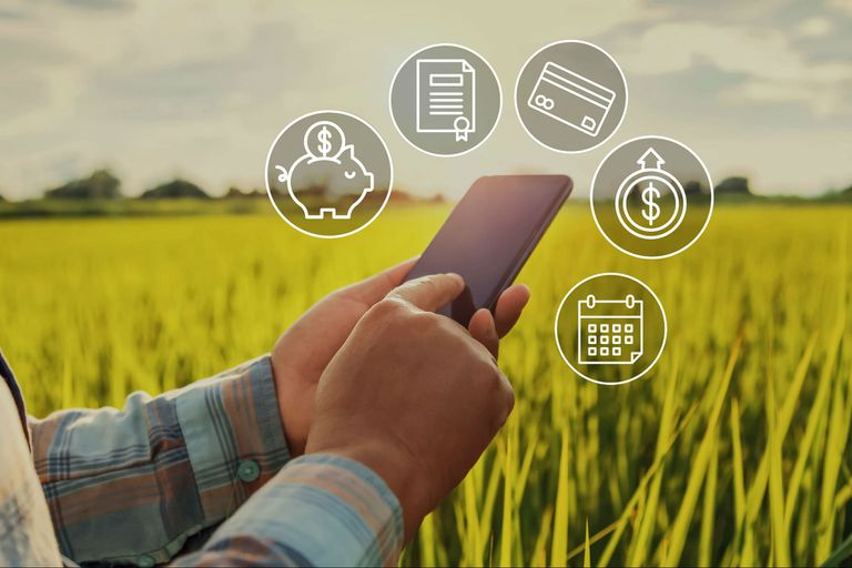 Las entidades bancarias del país coincidieron que en el 2020 los créditos para el agro crecieron con respecto al año anterior