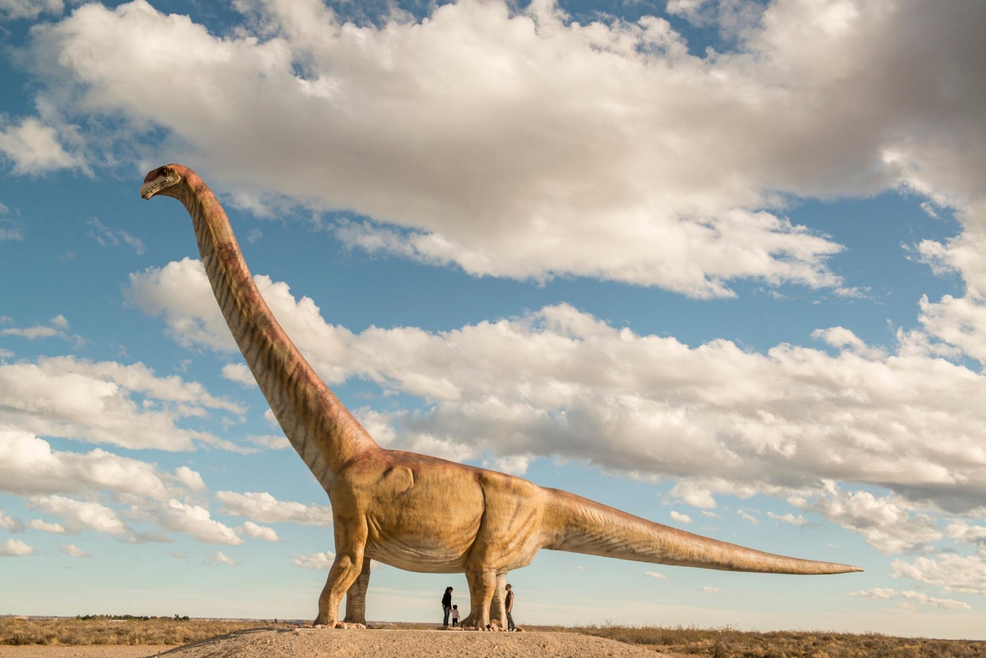 Trelew, Chubut. Es la réplica a escala real del titanosaurio, el hervíboro más grande del mundo (mide 40 metros y pesa 15 toneladas) hallado en una estancia de la zona, en la entrada a la ciudad. Su fémur se expone en el MEF, Museo paleontológico Egidio Feruglio.