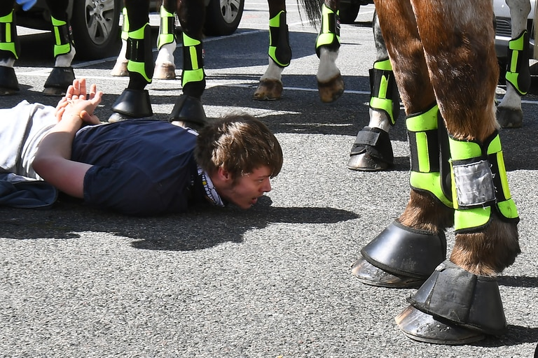 La policía detiene a un manifestante antibloqueo en el mercado Queen Victoria de Melbourne durante un mitin el 13 de septiembre de 2020, en medio de la pandemia de coronavirus