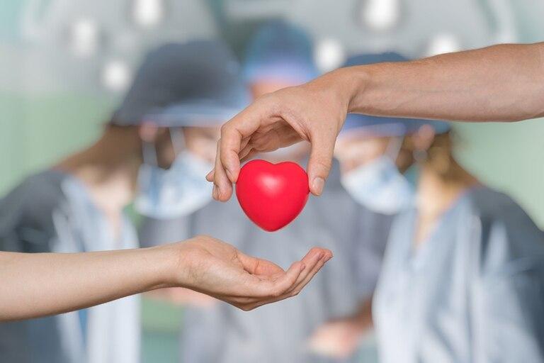 Hoy es el Día Internacional del trasplante de órganos y tejidos.