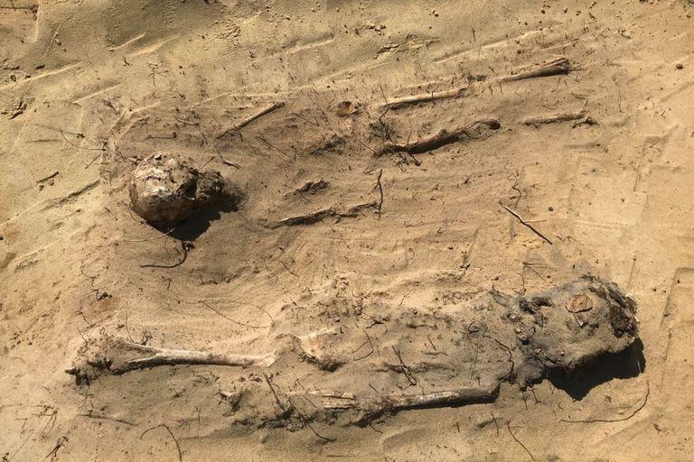 Antiguo cementerio: hallan restos de 100 niños enterrados con monedas en la boca