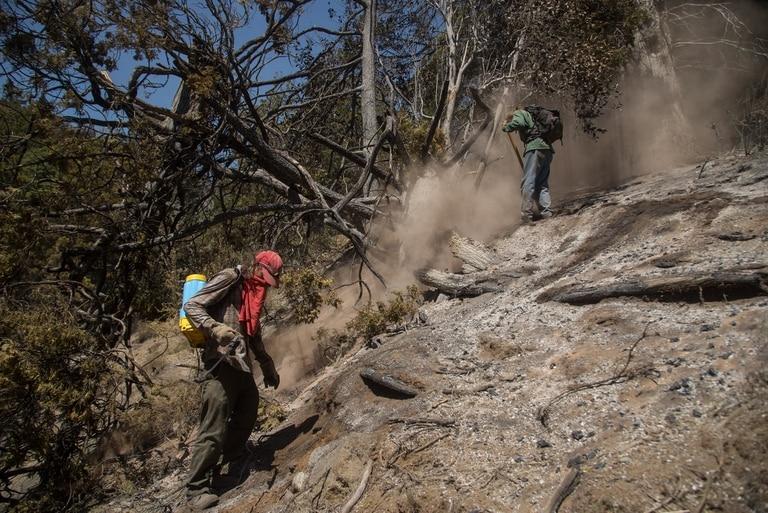 Brigadistas y vecinos de la zona de Rinconada Nahuelpan intentan contener el incendio forestal en cercanías de El Bolsón