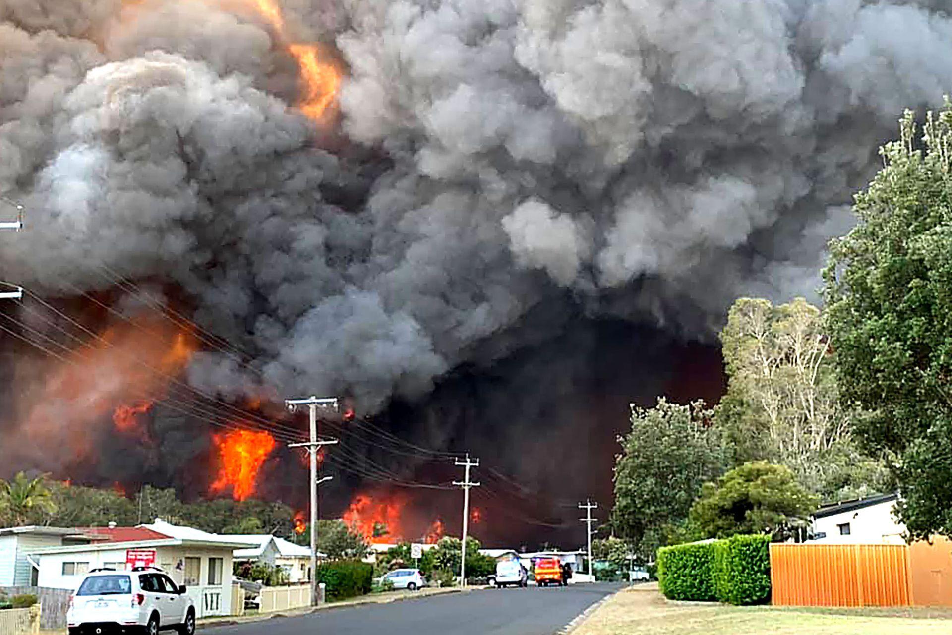 Un feroz incendio forestal se desató en una zona residencial de Sidney