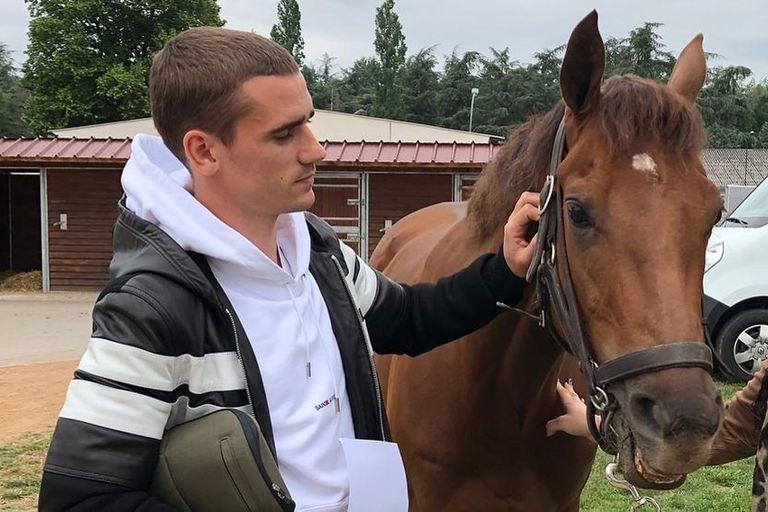 Lado B: las 5 estrellas del deporte mundial que se rindieron ante los caballos
