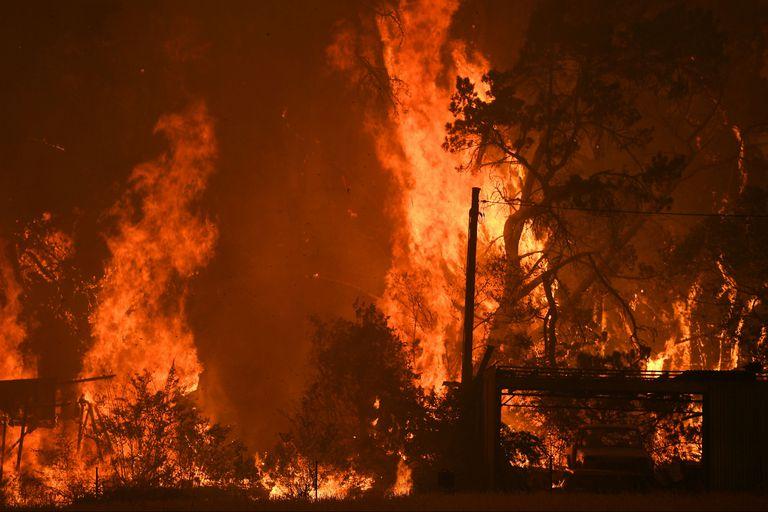 Más de 460.000 hectáreas fueron arrasadas por las llamas al norte de Sidney.