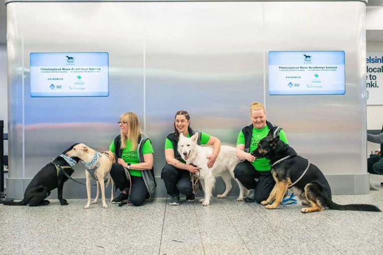 Aeropuerto de Helsinki. Tests de Covid-19 con perros que lo detectan en el sudor
