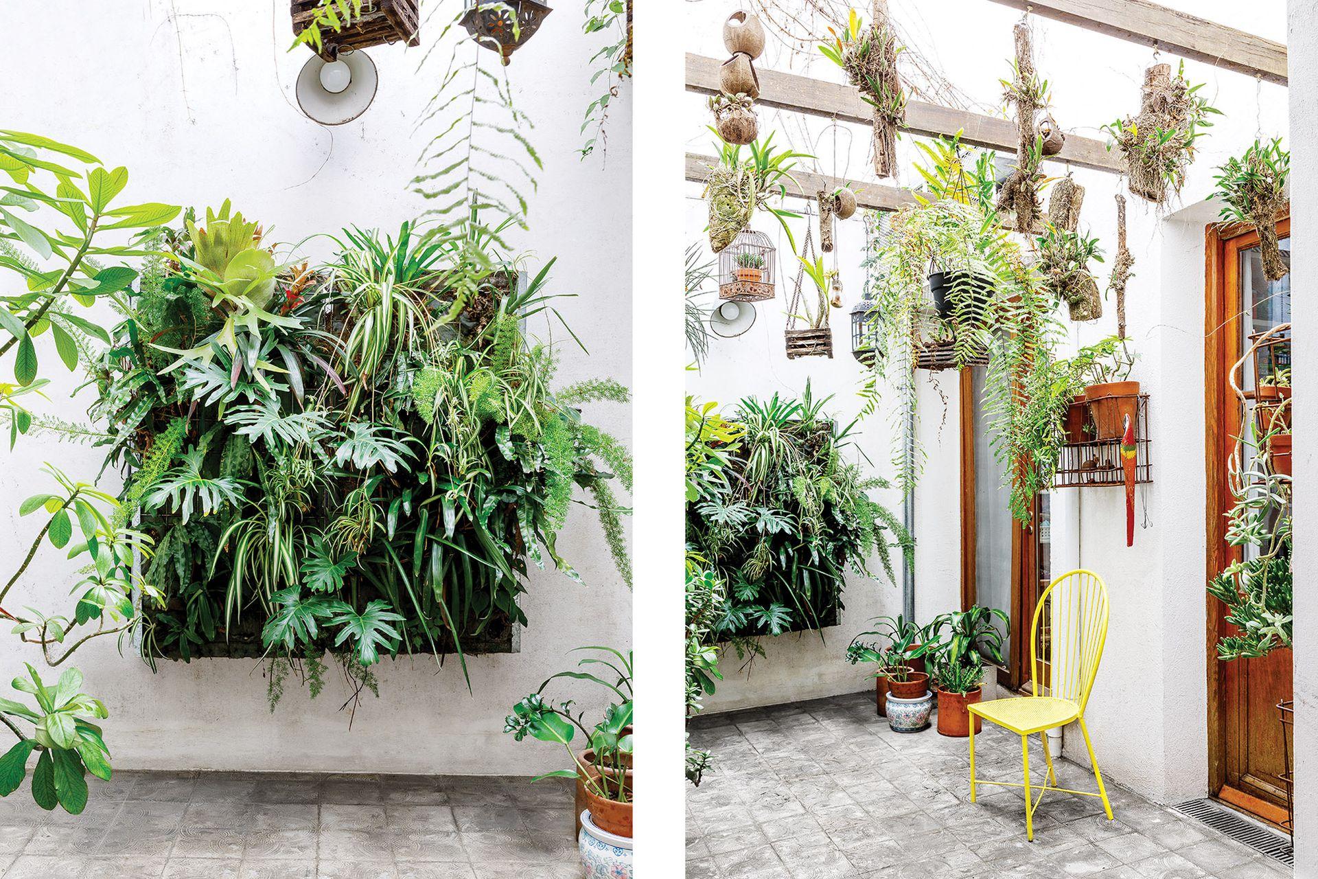 La pareja ganó este jardín vertical en un concurso organizado por G-Wall.