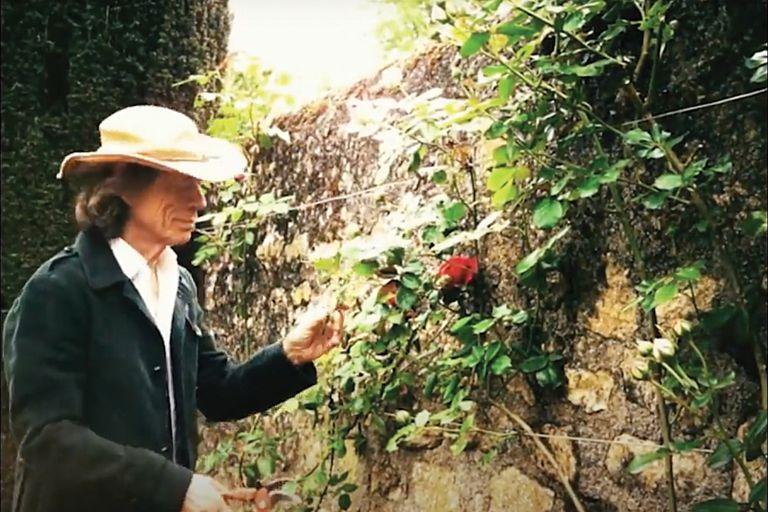 Mick, quien en 2019 fue operado del corazón, pasa sus días en su palacete del siglo XVIII, doscientos kilómetros al sur de París, y poda los rosales