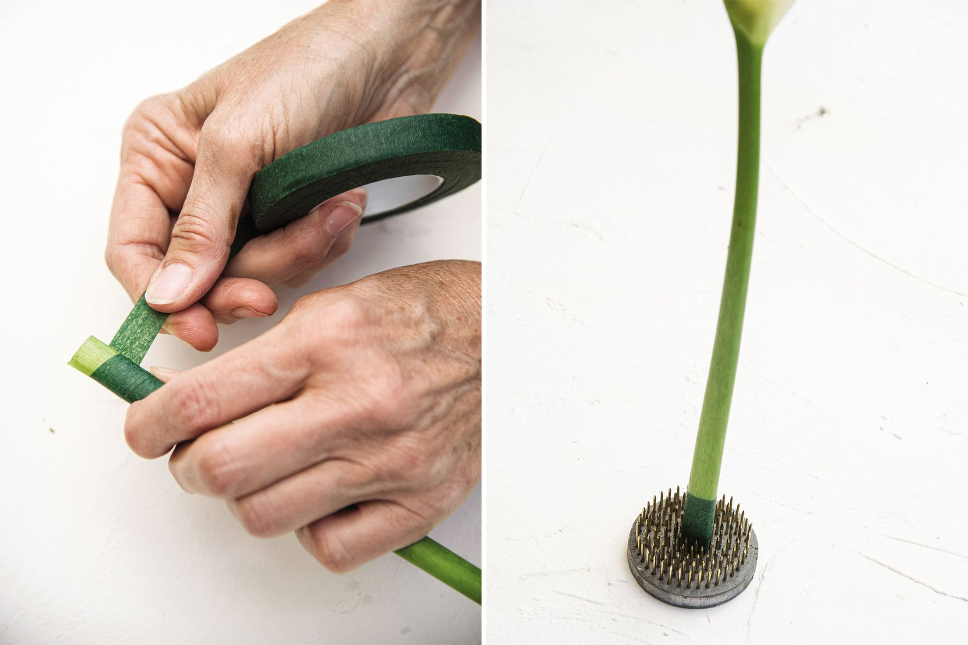 A los tallos muy tiernos, como los de las como los de amarilis, calas (Zantedeschia aethiopica), etc., hay que realizarles un corte recto y proteger el extremo del tallo con cinta de entaipar para que no se abran.